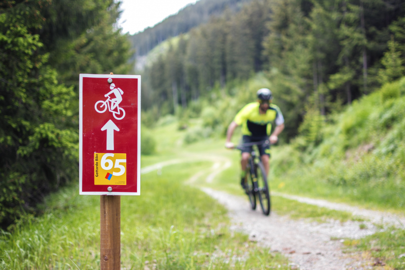 Gottardo Bike Route 65
