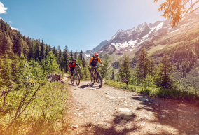 Best of Valais with a guide
