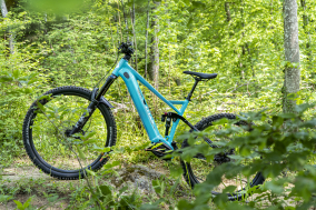 Rock Fly von CYLAN Cycles