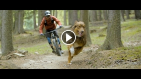 Paws and Wheels mit Oli Dorn