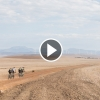 Video Cape Epic 2017