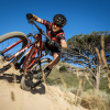 Specialized Factory Racing Sina Frei